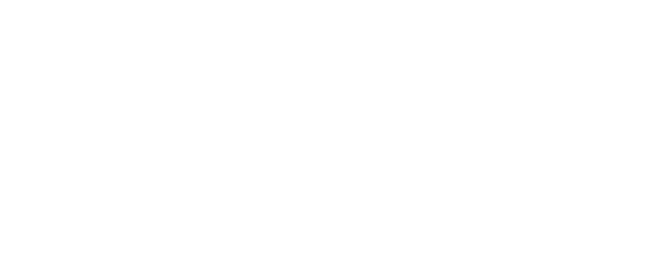 DEC and Plan logo