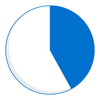 Expenditure pie chart - 42 percent