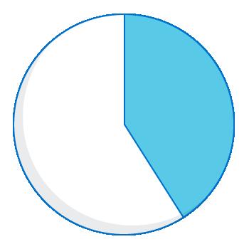 Expenditure pie chart - 41 percent
