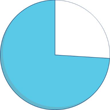 Expenditure pie chart - 74 percent