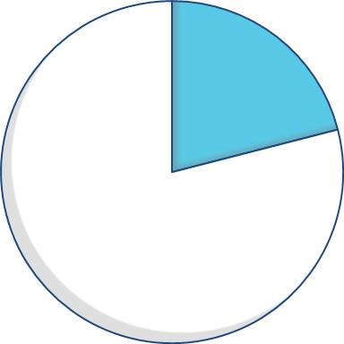 Expenditure pie chart - 21 percent