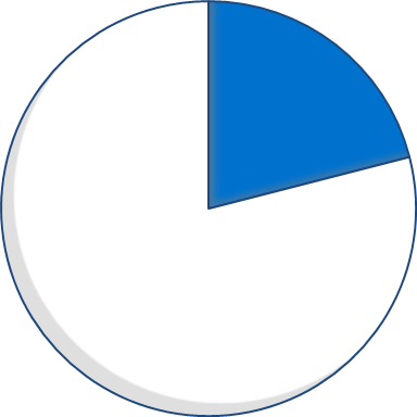Expenditure pie chart - 21 percent