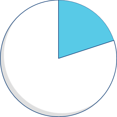 Expenditure pie chart - 20 percent