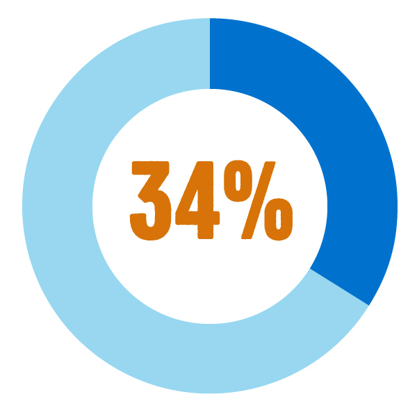 Graphic of a pie chart showing 34%