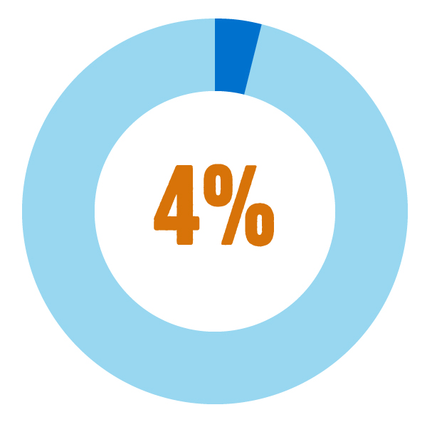Graphic of a pie chart showing 4%