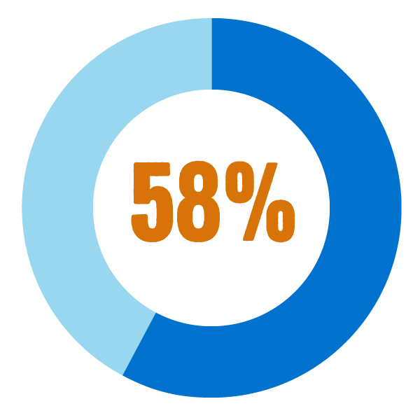 Graphic of a pie chart showing 58%