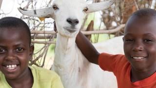 Lucia, Munai (goat) and Nzioki smiling