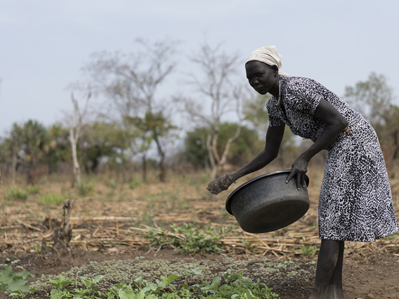 A woman sews seeds in South Sudan
