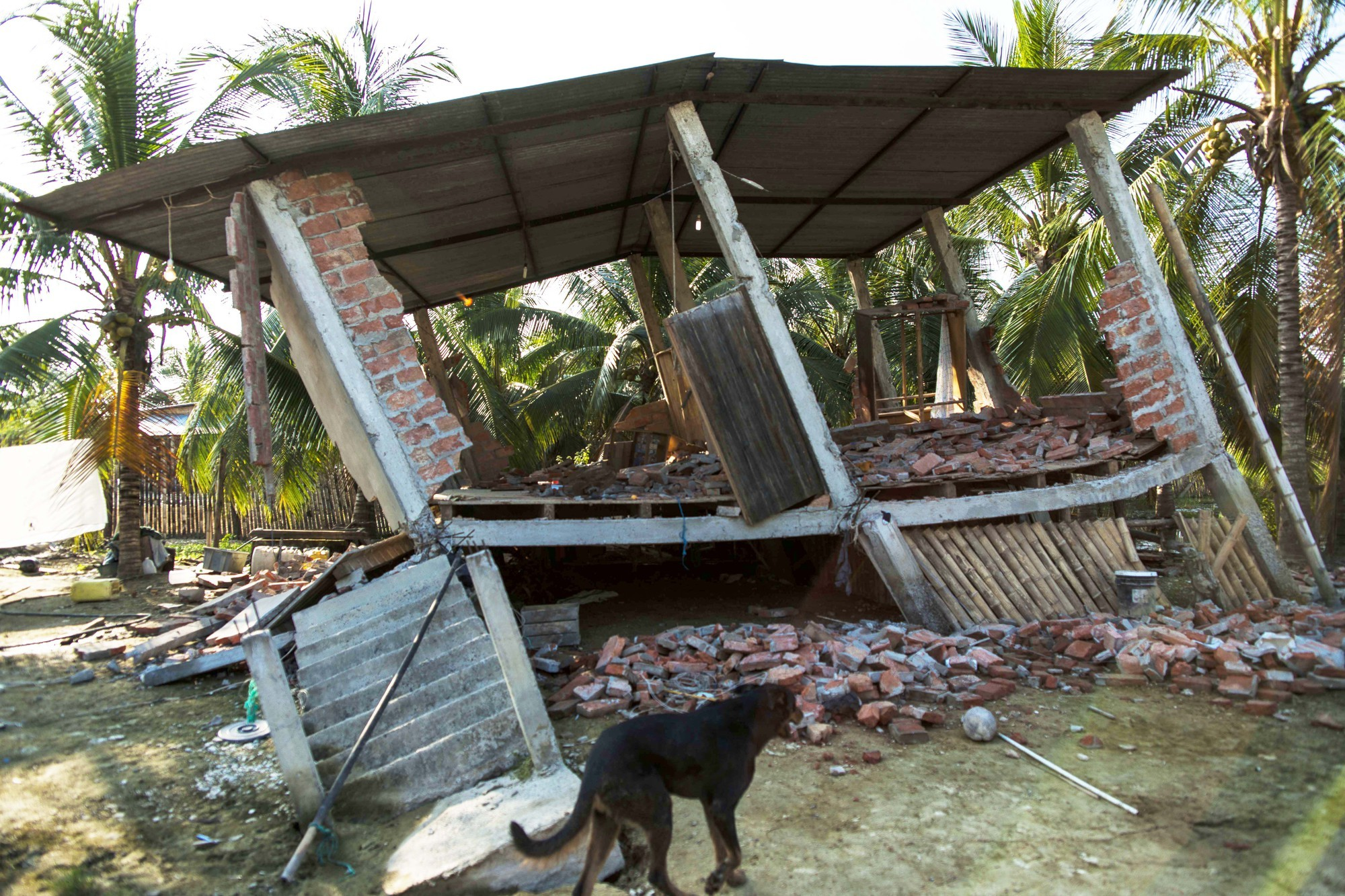 Collapsed house caused by earthquake in Manabi province