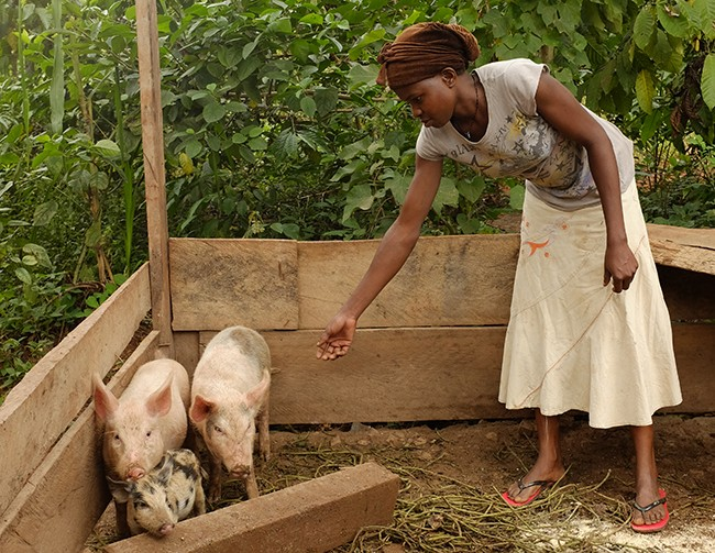 Resty with her pigs in Uganda