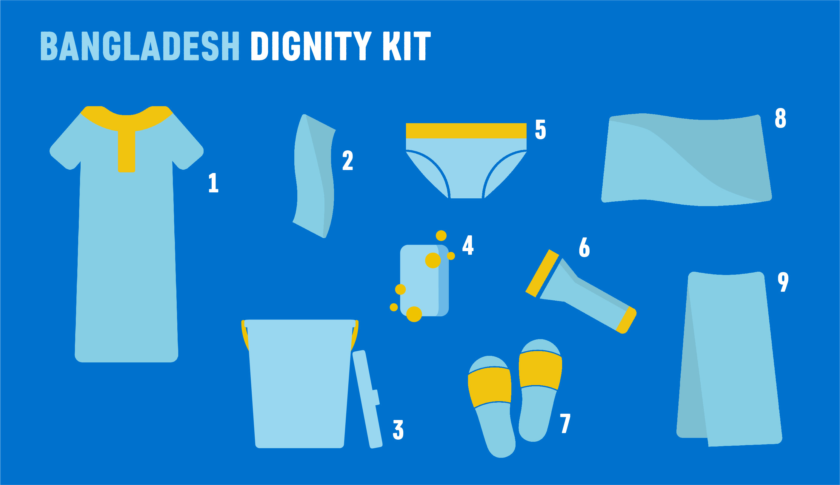 An infographic showing the contents of a dignity kit