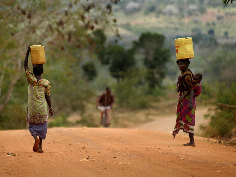 women and girls carrying water