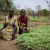 Villagers sit by their crops in South Sudan