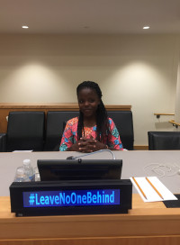 Mervis at the UN general assembly